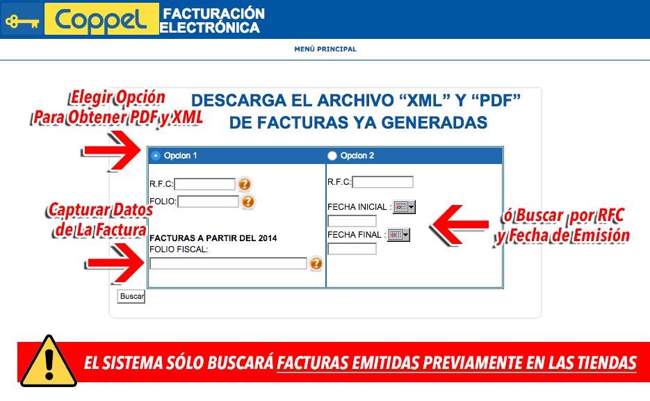 Coppel Paso 1Capture Datos de Factura a Consultar