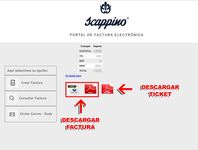 Scappino Paso 3  Descarga de factura